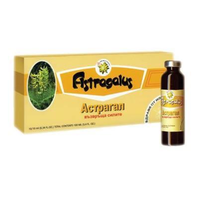 Astragalas + reishi grybo ekstraktai, 10 buteliukų