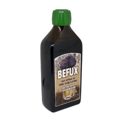 Befux čaga užpilas su žemės taukų sultimis, 250 ml